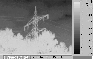ligne electique et arbres (thermographic / thermal picture)
